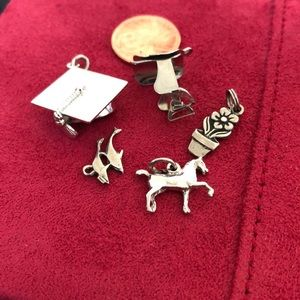 Sterling silver charm lot